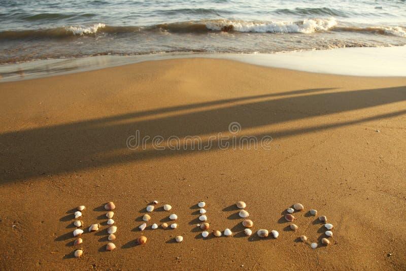Hallo op strand stock fotografie
