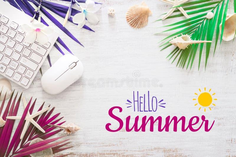 Hallo Plakat-Hintergrundkonzept des Sommerreiseferienkonzeptes flaches gelegtes Hallo Sommertext auf dem weißen hölzernen Hinterg lizenzfreie abbildung