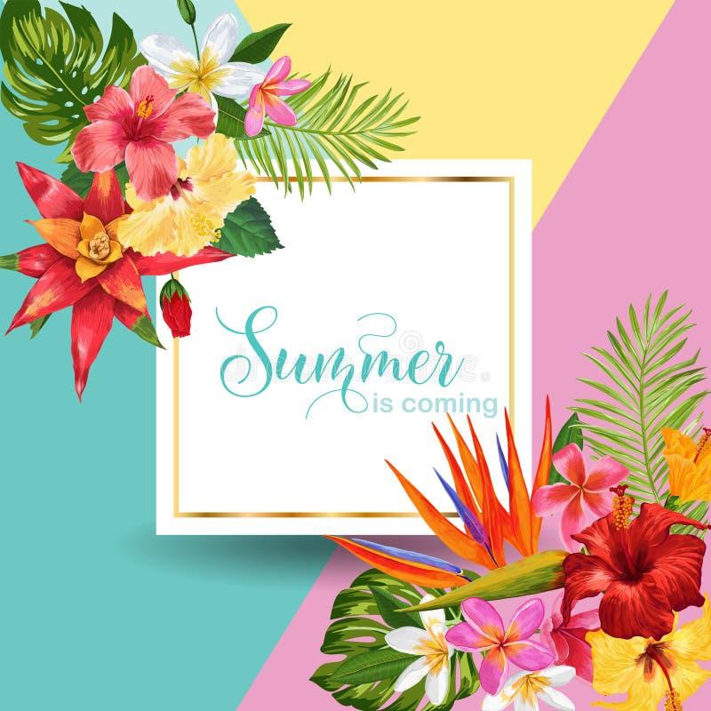 Hallo Sommer-tropisches Design Tropisches Hibiskus blüht Hintergrund für Plakat, Verkaufs-Fahne, Plakat, Flieger Blumenweinlese stock abbildung