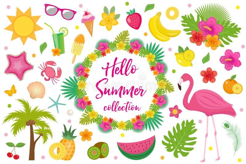 Hallo Sommerkollektion Gestaltungselemente, flache Art Tropischer Satz mit exotischen Blumen, Flamingos, Früchte Strand lizenzfreie abbildung