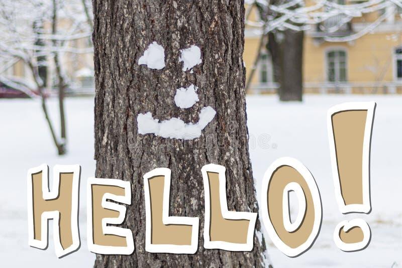 Hallo Winter! Winter lächelt lizenzfreie stockbilder