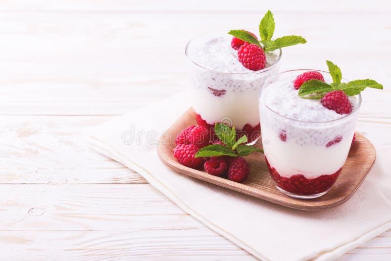 Hallonchiapudding och fruktsmoothie med mintkaramellen royaltyfria foton