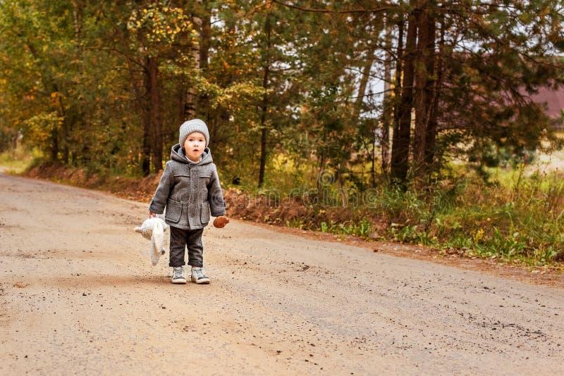Halloo gritando do menino perdido da criança nas madeiras em um revestimento cinzento com um coelho do brinquedo e em um cogumelo imagem de stock