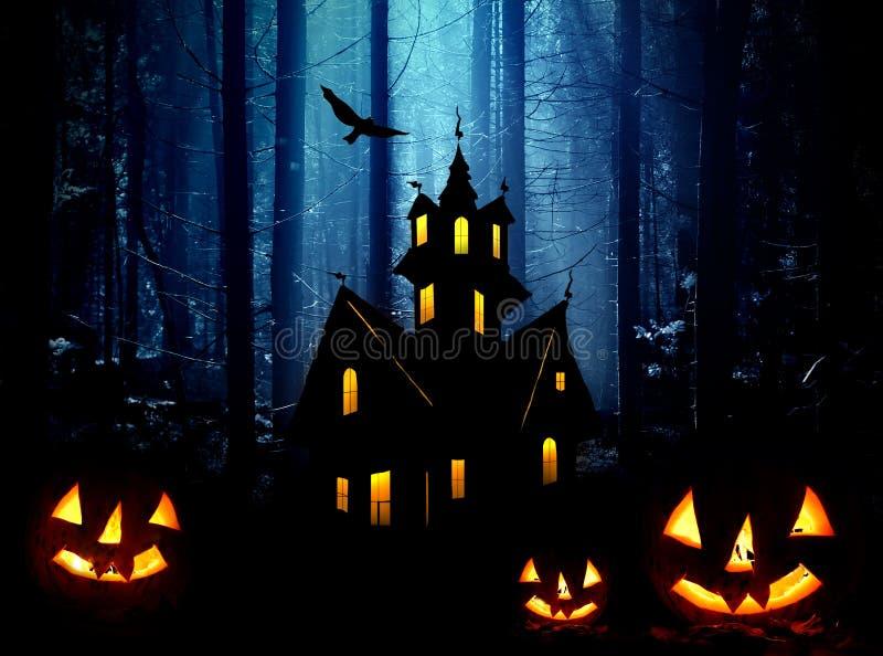 Halloween в пуще. Ноча стоковое фото rf