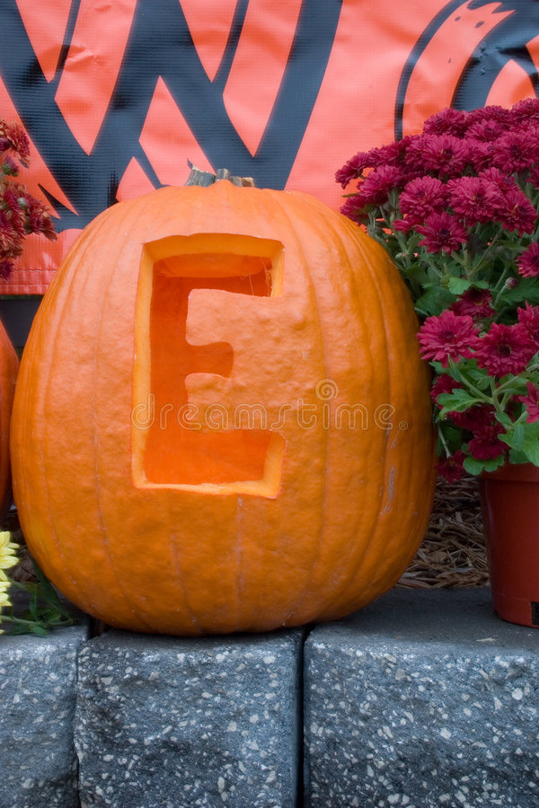 Download Halloween stock photo. Image of flowers, sign, celebration - 312512
