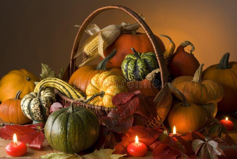 Halloween foto de stock