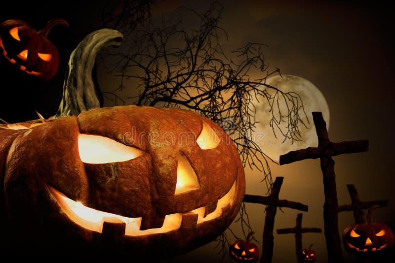 Halloween stockfotos