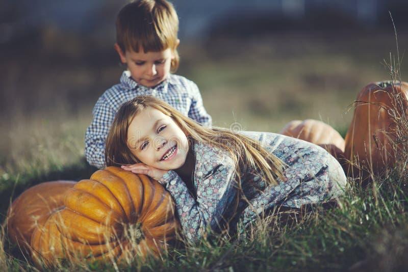 halloween стоковое фото rf