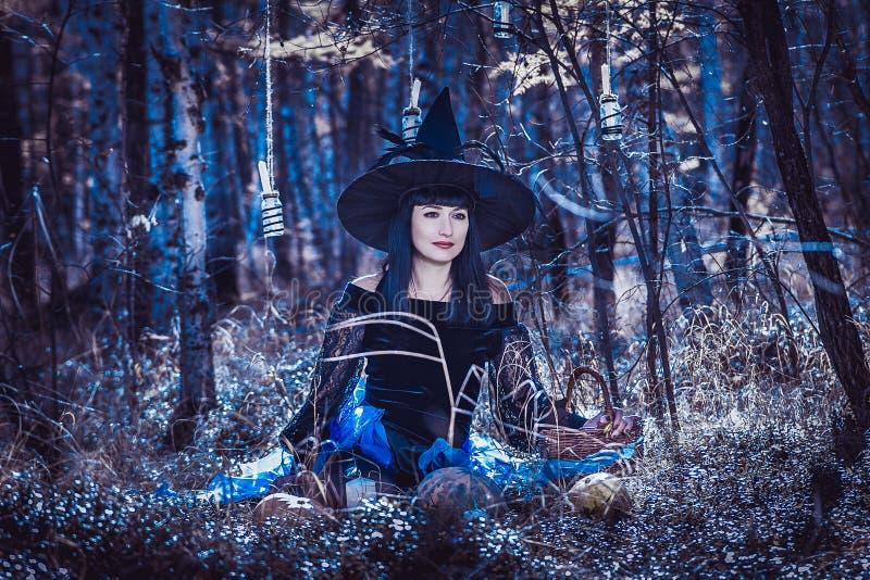 halloween obrazy stock