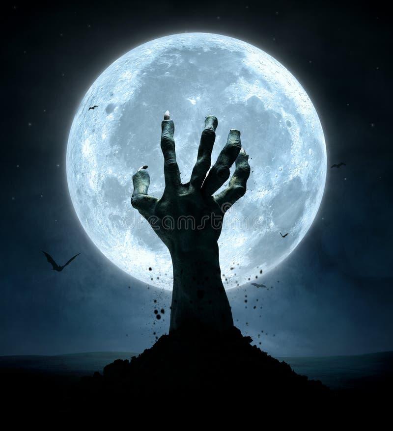 Free Halloween Stock Photo - 59291780