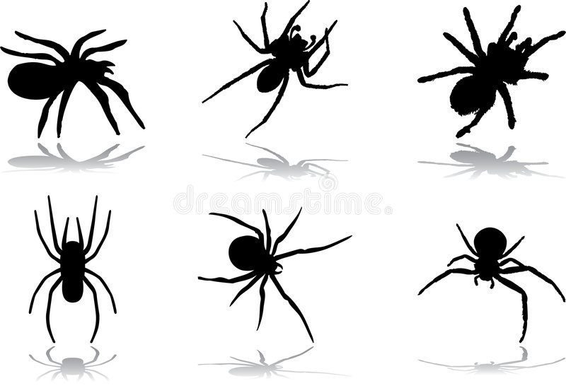 Halloween 77 pająków ilustracja wektor