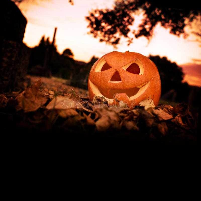 Halloween Background. With copy space stock photos