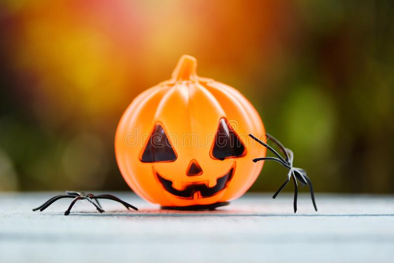 Halloween background decorated holidays festive concept - spider and  lantern pumpkin halloween decorations for party accessories. Halloween background decorated royalty free stock photo