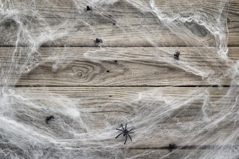 Halloween background with decorative creepy web and spiders on o. Ld wooden boards. Blank space for text. Festive concept royalty free stock images