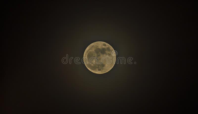 Halloween background .full moon dark cloud at night stock image