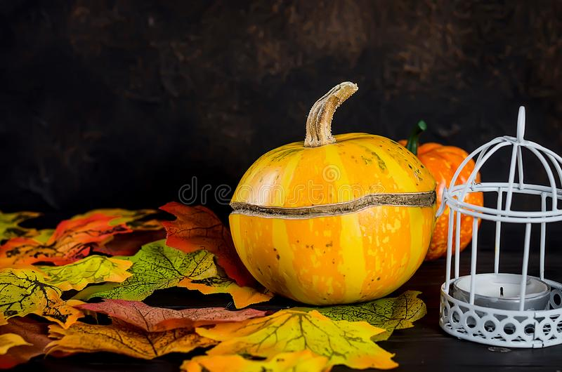 Halloween background with gingerbread, pumpkins and candles. Halloween decorations,pumpkins, variety of gingerbreads,, spider and cobweb on black background royalty free stock photography
