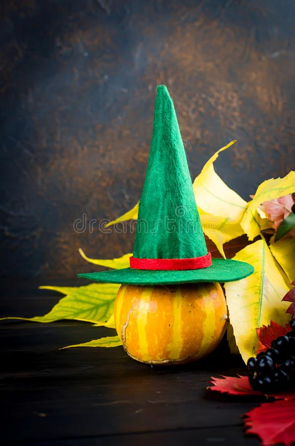 Halloween background with pumpkins and traditional decorations. Halloween decorations, pumpkins, spider and cobweb with black frame for text on black background stock images