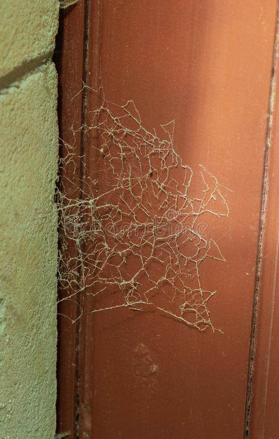 Halloween background, spider web on an old abandoned door. Halloween background, spider web on an old abandoned  red door royalty free stock photos