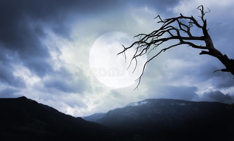 Halloween background. Spooky mountains and tree with full moon. Halloween background. Spooky dark mountains and tree with full moon stock images