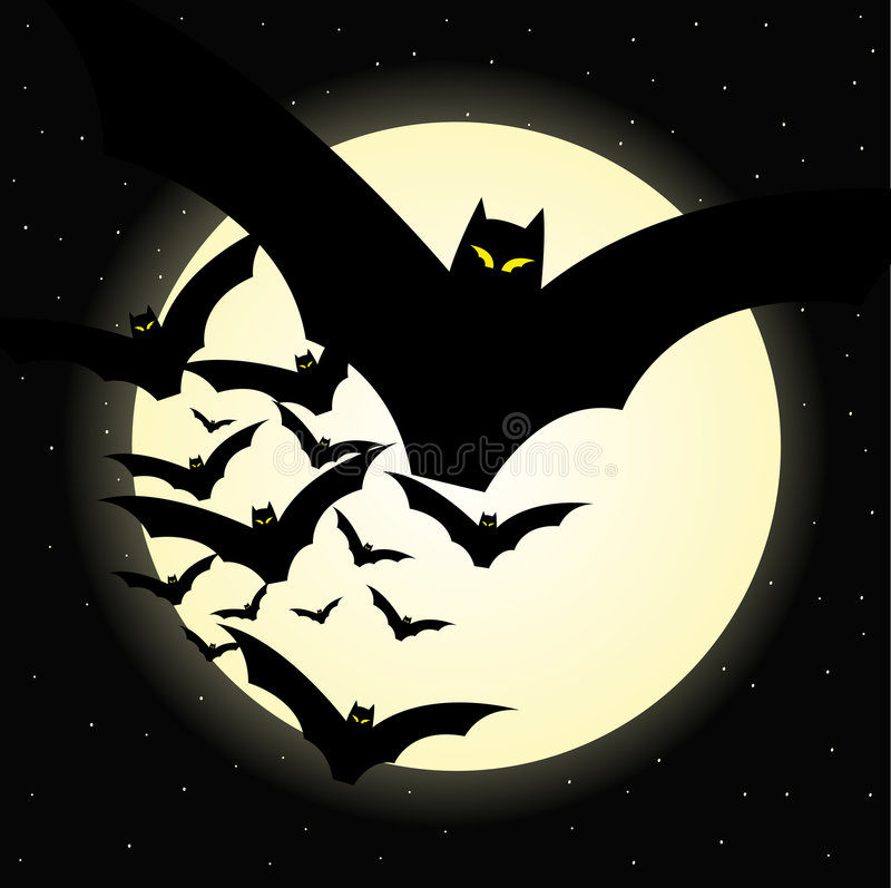 Halloween bat night royalty free stock photography