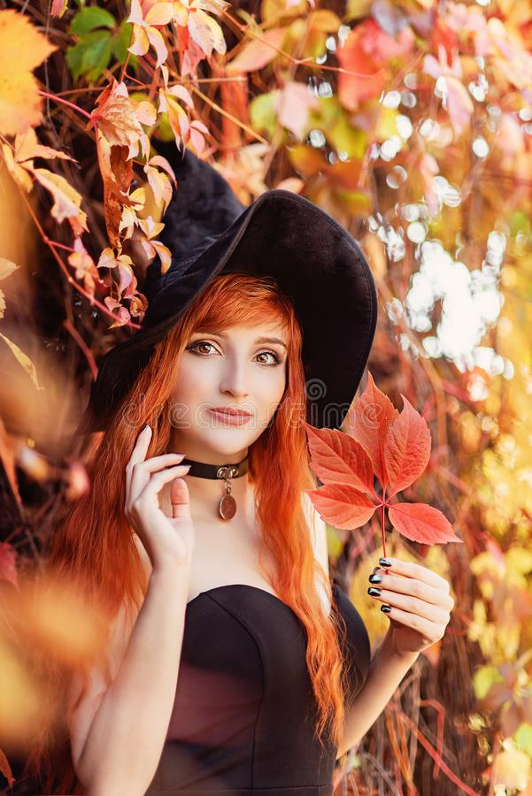Free Halloween Beautiful Young Witch Girl In Witches Hat Stock Photos - 161196733