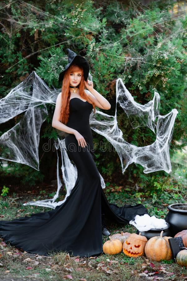 Halloween Beautiful young Witch girl in witches hat stock image