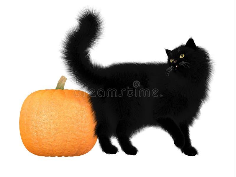 Halloween Black Cat And Pumpkin Stock Illustration Illustration Of