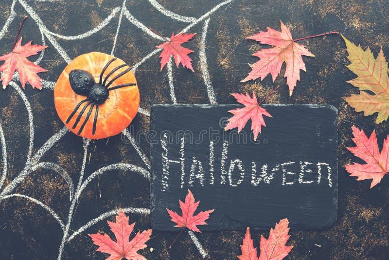 Halloween, calabaza, araña, hojas de arce rojas, web de araña dibujado en tiza en un fondo rústico oscuro Letrero con con texto-P imágenes de archivo libres de regalías