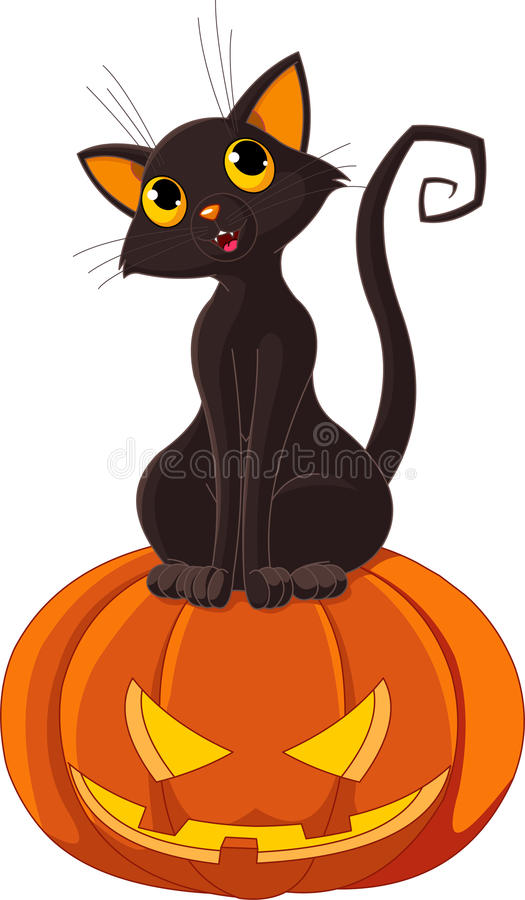 Halloween Cat On Pumpkin Stock Photos