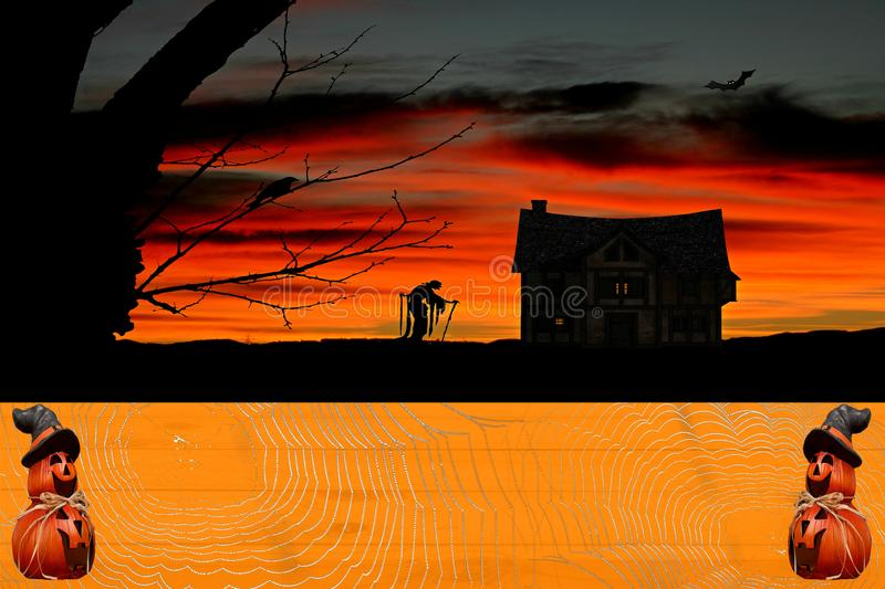 Halloween celebration background a orange pumpkin colored wooden table covered in spiderwebs with pumpkins wearing a witch hat and. Horror house scenery stock photography