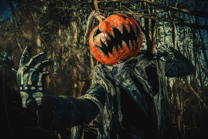 Devilish evil pumpkin. Halloween character. A terrible Jack-lantern with a pumpkin on his head wanders through the night forest stock image