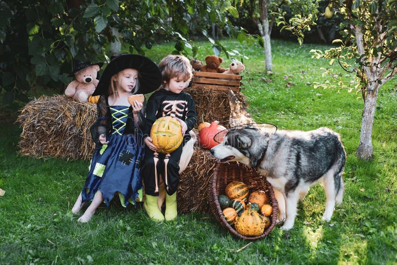 Halloween children enjoying in the autumn park on field. Halloween on countryside. Children sister and brother with stock photo
