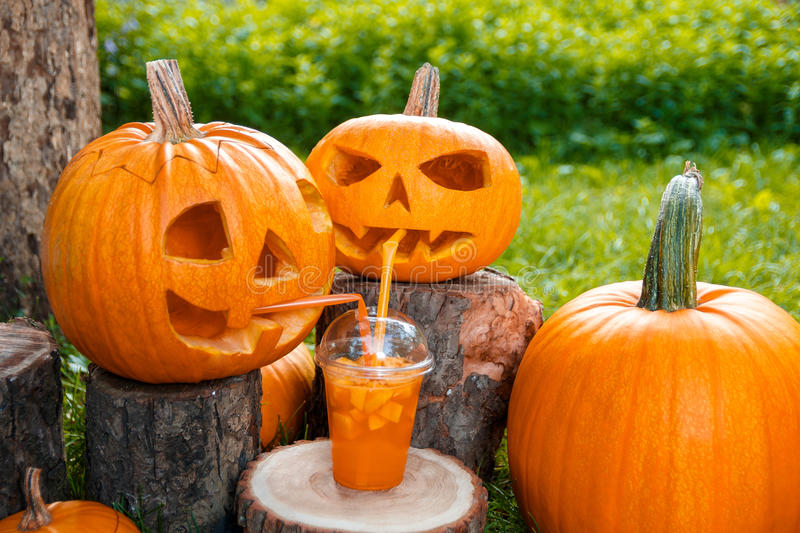 Halloween cocktail near pumpkins decoration on background. Punch for a party. Jack-o-Lantern is drinking . stock photo