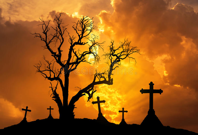 Halloween concept background with scary silhouette dead tree and spooky silhouette crosses royalty free stock image