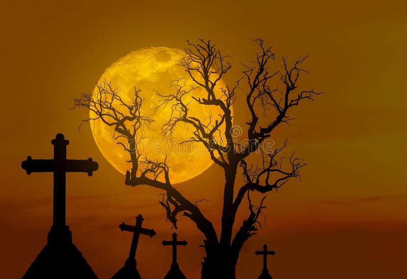Halloween concept background with scary silhouette dead tree and spooky silhouette crosses in mystic graveyard and big full moon. Background royalty free stock images