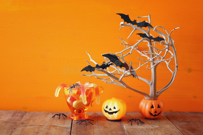 Halloween concept. Cute pumpkins, candy and tree with bats royalty free stock images
