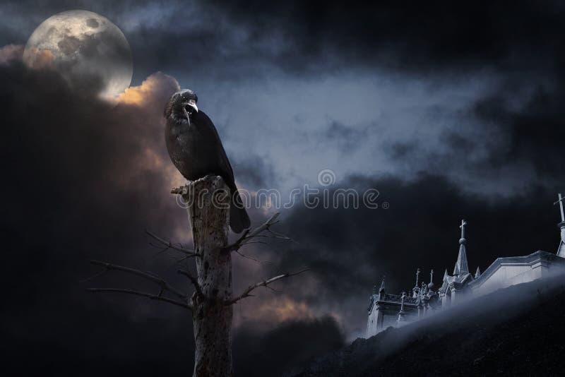 Halloween crow stock illustration