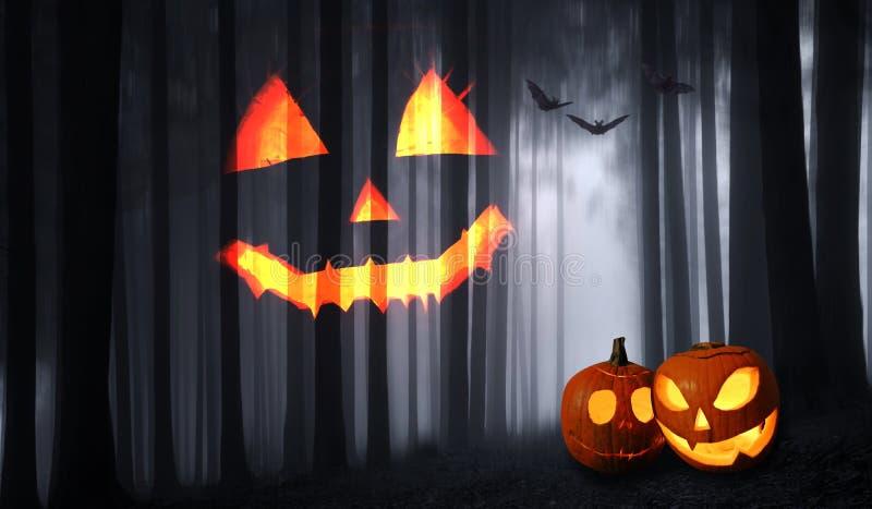 Halloween dark forest background and pumpkins stock image