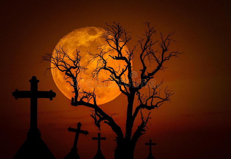 Halloween dark grunge grain concept background with scary dead tree and spooky silhouette crosses and full mo. Halloween dark grunge grain concept background royalty free stock photos