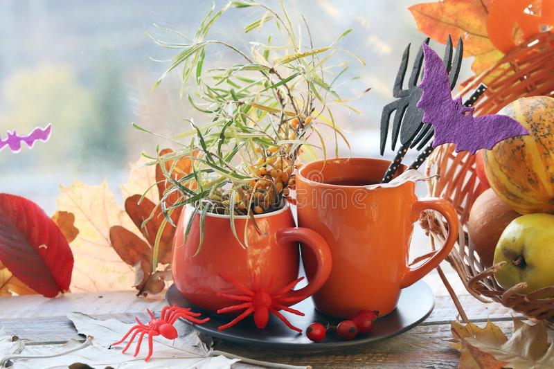 Halloween decor, a couple of cups with a drink, spiders, pumpkins, fruits, leaves on the windowsill, autumn seasonal holidays. The concept of home comfort royalty free stock image