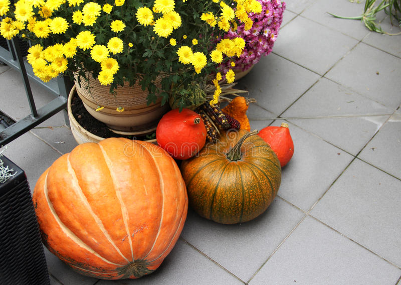 Halloween decorations with pumpkin and lot of flowers stock photography
