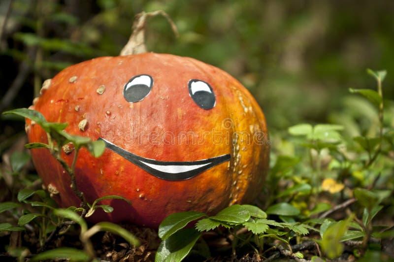 Halloween-Dekoration stockfotos