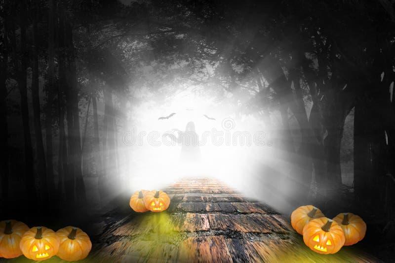 Halloween design - Forest pumpkins in darken royalty free stock photo