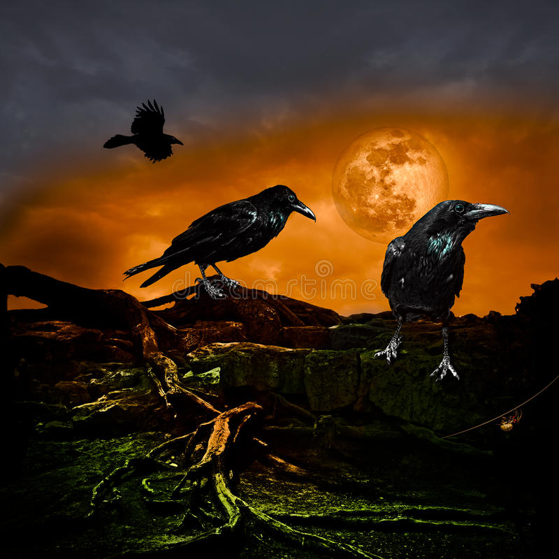 Halloween Design Holiday Party Background Full Moon Raven
