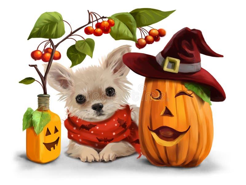 Halloween dla chihuahua ilustracji