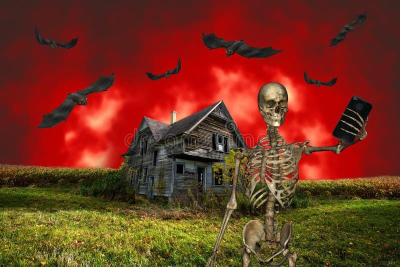 Halloween drôle Selfie image stock