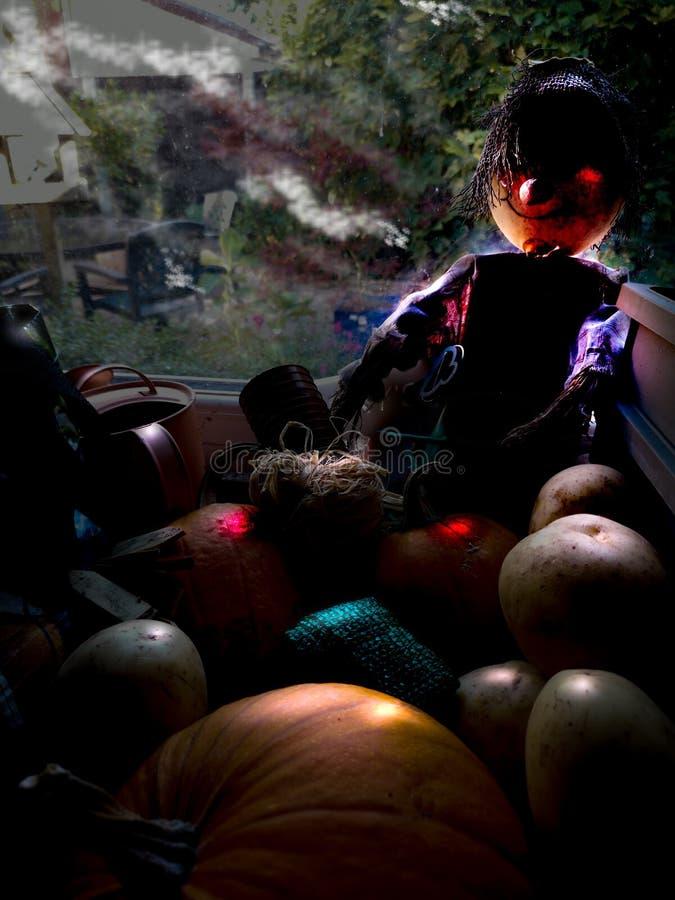 Halloween en la vertiente del jardín fotos de archivo libres de regalías
