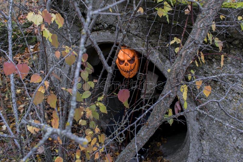 halloween En man i klättringar för en pumpa för dräkt av ondo ut ur fängelsehålan arkivbilder
