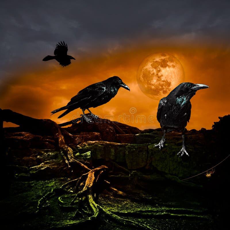 Halloween-Entwurfs-Urlaubsparty-Hintergrund-Vollmond Raven Crow stock abbildung
