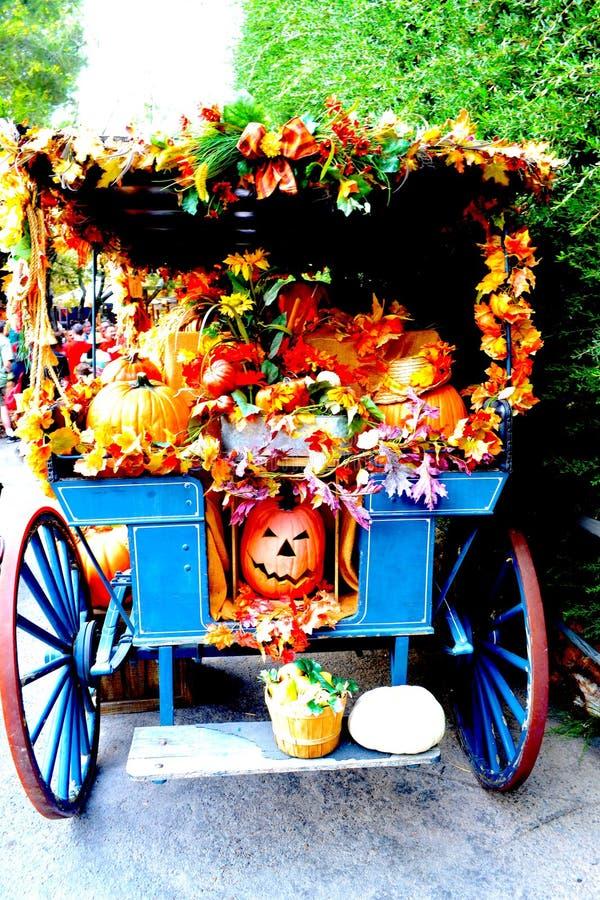 Halloween-Ernte lizenzfreies stockfoto
